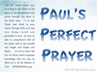 Paul's Perfect Prayer - PAUL - Man of Prayer study (1)